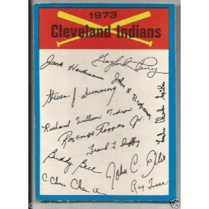 1973 OPC TEAM CHECKLIST BLUE CLEVELAND INDIANS BACK UNMARKED RARE SP